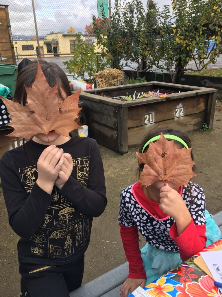1st graders having fun with leaves