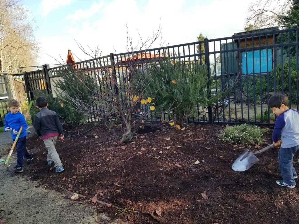 Garden Work Day - Digging and mulching